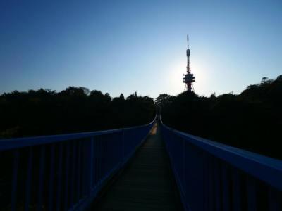 【2021年版】栃木県の夜景ドライブデートならここ!関東在住の筆者おすすめの15スポット