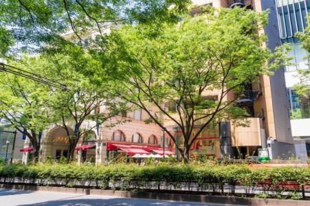 【2020年版】青山のレストランならここ!青山エリア通がおすすめしたいお店15選