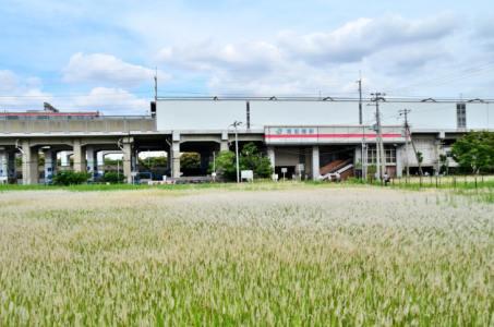 【2020年版】南船橋デートならここ!千葉県在住筆者おすすめの15スポット