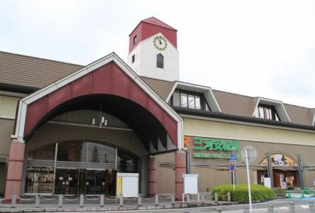 【2020年版】安城デートならここ!愛知県民おすすめの15スポット