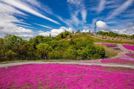 【2020年版】名古屋から日帰りドライブデートならここ!名古屋出身者オススメの15スポット