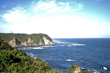 【2021年版】勝浦デートならここ!千葉県在住の筆者おすすめの15スポット【定番・パワースポット・海水浴やお祭り情報も】