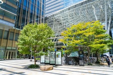 【2021年版】東京ミッドタウンのレストランならここ!グルメライターおすすめの14店【低コスト・贅沢・景色◎・ティータイムなど】