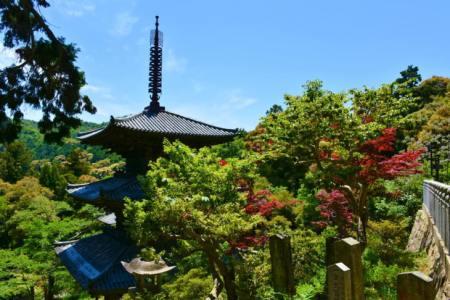 【2021年版】加西デートならここ!兵庫県民おすすめの15スポット【定番・歴史・パワースポット・お祭り情報まで】