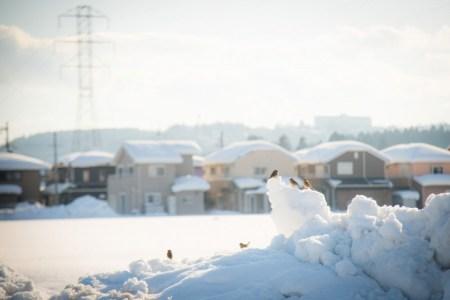 【2021年版】冬の滋賀デートならここ!滋賀出身の筆者おすすめの15スポット【定番から冬ならではの景色スポット・温泉など】