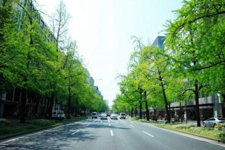 【2021年版】大阪・本町でランチを楽しむならここ!市内在住の筆者おすすめの15店【フレンチ/イタリアン/和食・肉・記念日向け・コスパ◎など】