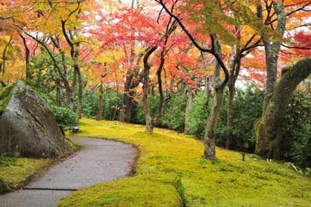 【2021年版】箱根でドライブデートをするならここ!箱根通おすすめスポット15選【水族館や美術館・のんびりお散歩スポットなど】