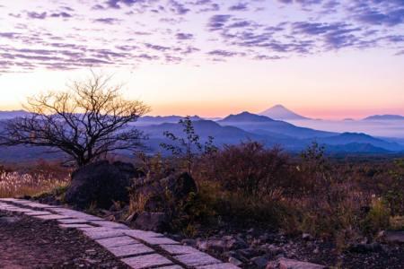 【2021年版】八ヶ岳デートならここ!長野在住筆者おすすめスポット15選【絶景・ショッピング・グルメ・素敵な宿など】