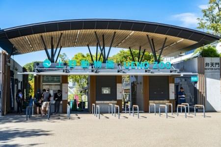 【2021年版】上野動物園周辺のレストランならここ!上野動物園によく行く筆者おすすめの15店【和洋中ジャンル別に紹介・コスパ◎なお店も】