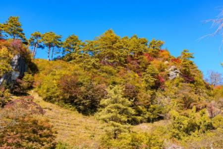 【2021年版】能代デートならここ!秋田デート経験者おすすめの15スポット【パワースポット・自然・桜・観光など】