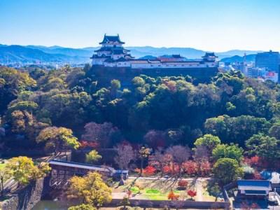 【2021年版】和歌山ドライブデートならここ!在住者厳選のデートスポット【15選】