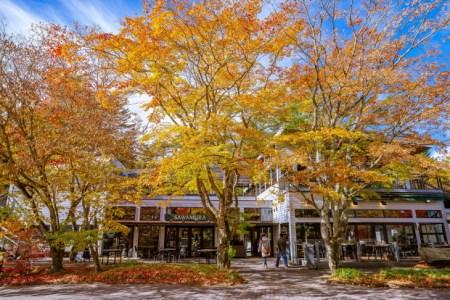 【2021年版】軽井沢でおいしいレストランならここ!軽井沢大好きな筆者おすすめの15店【イタリアン/フレンチ・そば・ベーカリー/カフェなど】