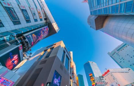 【2021年版】渋谷・文化村周辺のランチならここ!カップルのデートや記念日にもおすすめ【渋谷通が徹底ガイド】雰囲気のいいフレンチ・イタリアン・鉄板焼き・割烹など