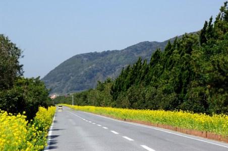 【2021年版】千葉県ドライブデートならここ!関東在住者おすすめの30スポット【エリア別・絶景・インスタ映え・レジャー・グルメなど】
