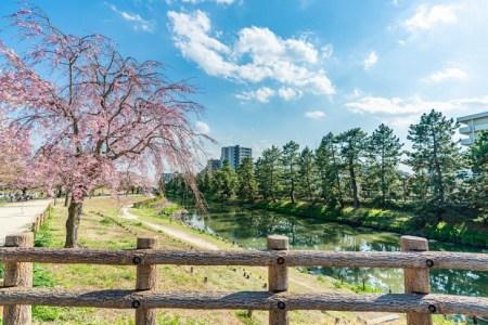 【2021年版】草加デートならここ!埼玉県民おすすめの14スポット【アクティブ・神社・温泉・おしゃれカフェなど】