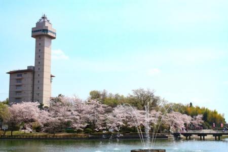 【2021年版】尾張旭デートならここ!東海在住筆者おすすめの15スポット【定番・公園・紅葉・紅茶・グルメ・カフェなど】