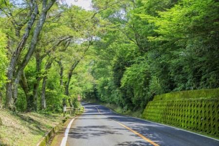 【2020年版】関西から日帰りドライブデートならここ!ドライブ好き女子おすすめの15スポット