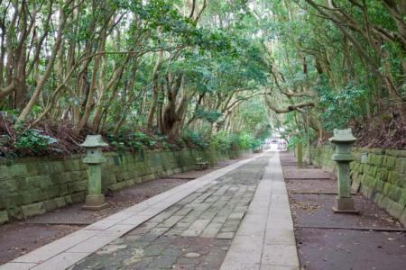 【2021年版】ひたちなかデートならここ!茨城出身筆者おすすめの15スポット【公園・神社・グルメなど・穴場スポットも】