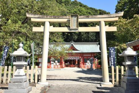 【2021年版】新宮デートならここ!神社好き筆者おすすめの15スポット【仏閣・神社巡り・絶景・グルメなど】