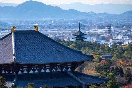 【2021年版】奈良の和食ランチ15選!カップルのデートや記念日にもおすすめ【関西在住グルメライターが徹底ガイド】ちょっと高級な懐石から・海鮮・コスパ◎なお店・レトロなカフェまで