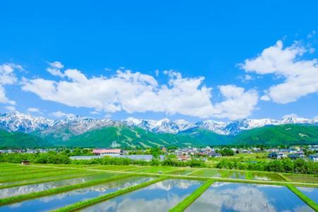 【2021年版】長野で学生デートならここ!長野在住者おすすめの15スポット【動物園・水族館・ショッピング・景観◎カフェなど】
