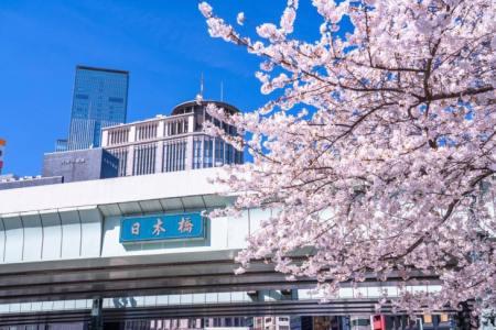 【予約可】日本橋で両家顔合わせにおすすめのお店15選!記念日やイベントごとが大好きな筆者が個室・和食・カフェ・カジュアルに使えるお店を徹底調査!