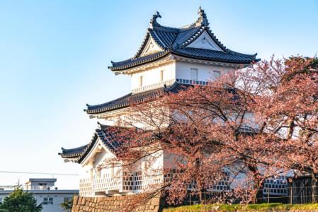 【2021年版】新発田デートならここ!旅行好きライターおすすめの15スポット【パワースポット・公園・グルメなど】