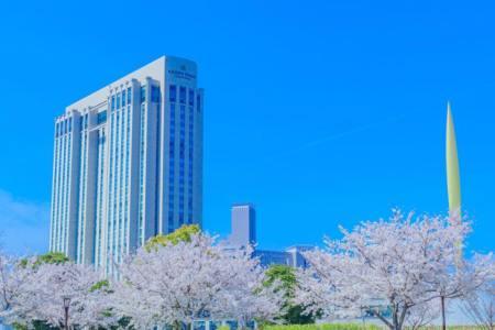 【予約可】グランドニッコー東京台場で両家顔合わせにおすすめのお店5選!ホテルを熟知した旅好きの筆者が個室・和食・カフェ・カジュアルに使えるお店を徹底調査!