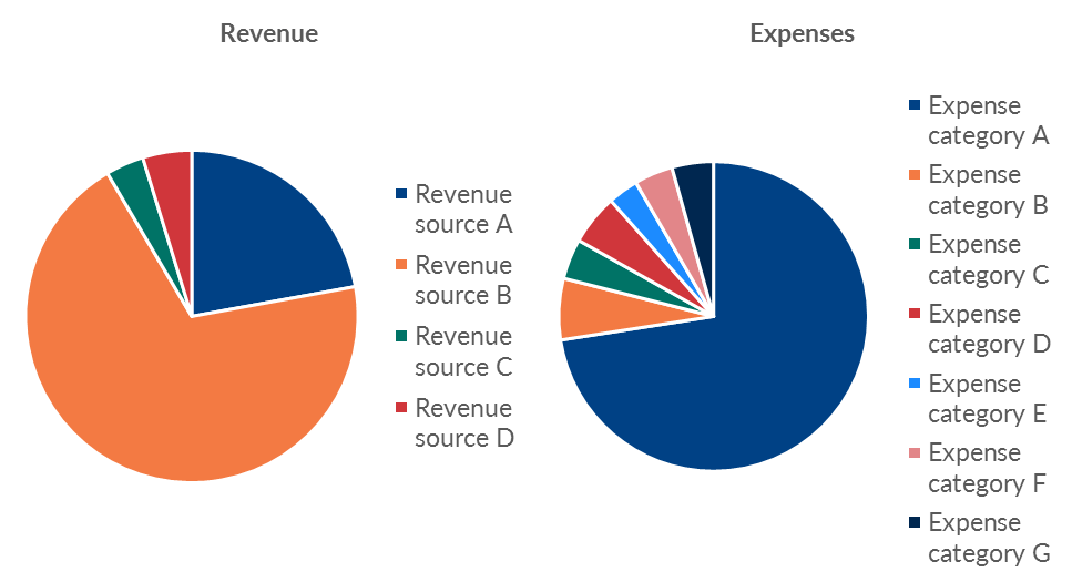 "Ann K. Emery's pie chart makeover: Here's the ""before"" version of the organization's revenue and expenses chart."