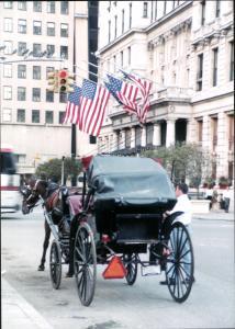 2001-9-11 NYC (9)