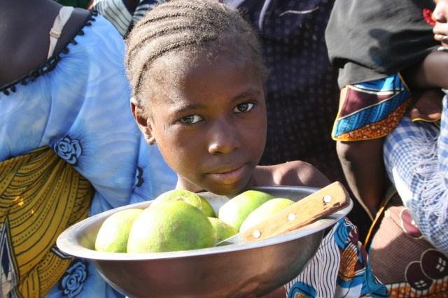 Mali 2010 (36)