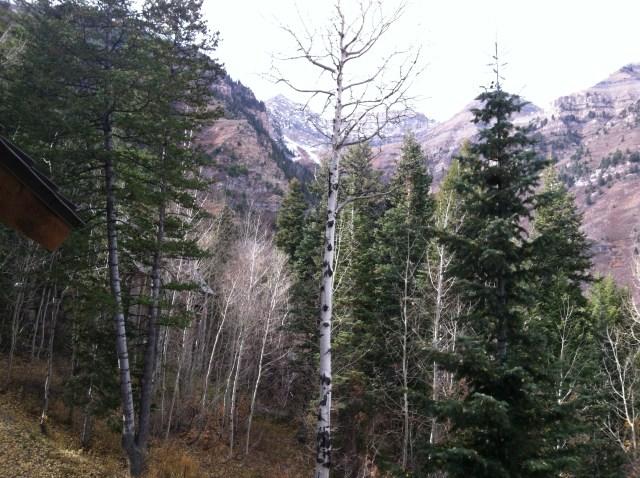 2013-10-28  Sundance (2)