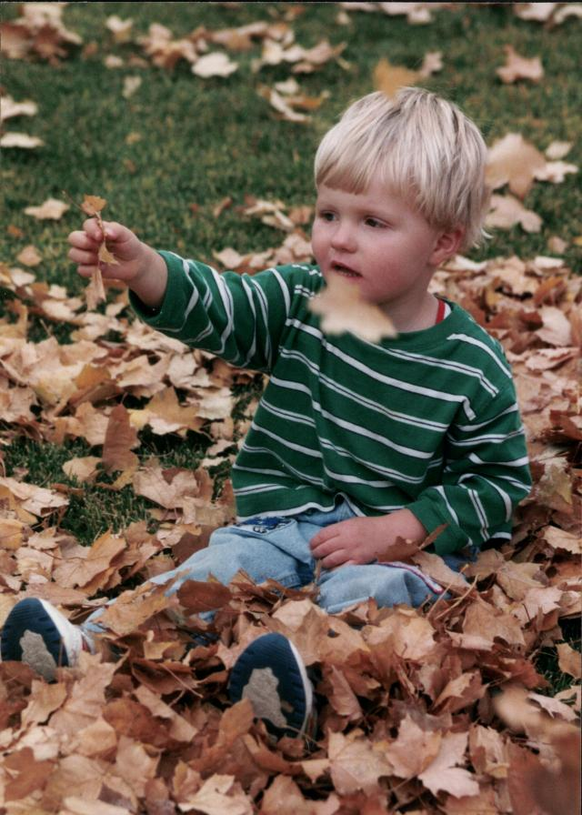 Aaron in leaves