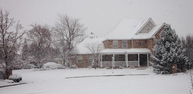 Snowfall Dec 2013