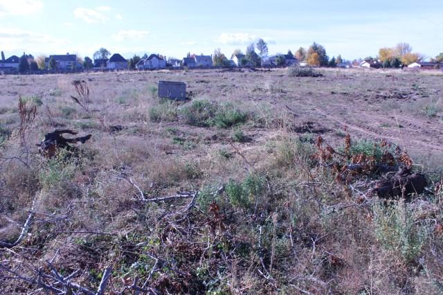 2014-10-27 Farley Orchard Murdered (8)