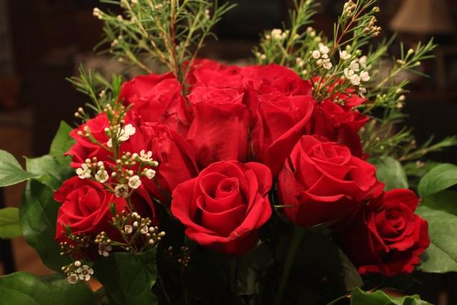 2015-2-14 Valentine's Day (2)