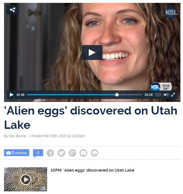 2016-3-13 Alien Eggs KSL