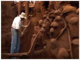 Ant Castles