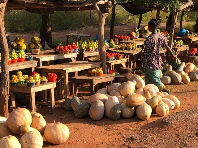 2018-11-15 Mali (78)