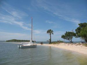 Photo by Billy Daniels, New Smyrna Beach FL
