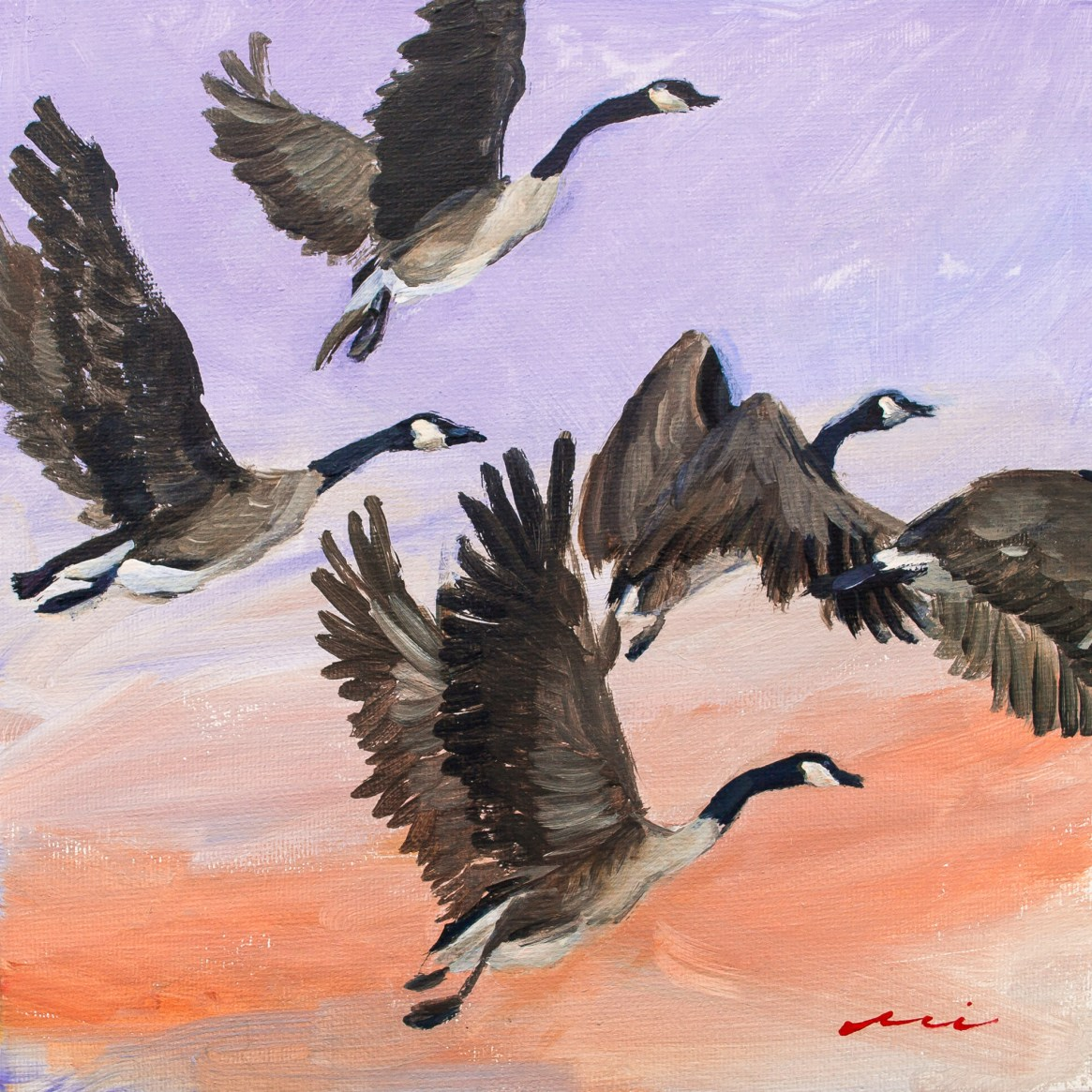 Migrating Geese, 2018