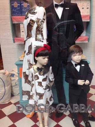 Window Dolce&Gabbana