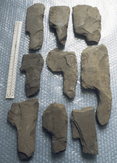 These have been shaped from the local shale to form a hatchet or cleaver-like head with a handle.