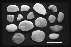 These stone flakes are found at Neolithic and Early Bronze Age sites in Orkney and Shetland.