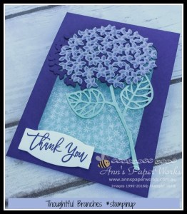 Thoughtful Branches Bundle, Ann's PaperWorks| Ann Lewis| Stampin' Up! (Aus) online store 24/7