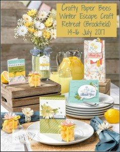 Crafty Paper Bees Winter Craft Retreat, Stampin' Up! Annual Catalogue, Card Making Classes, Scrapbooking, Ann's PaperWorks Ann Lewis Stampin' Up! (Aus)  online store 24/7