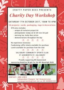 Crafty Paper Bees Christmas Charity Cardmaking Workshop, Ann's PaperWorks, Ann Lewis, stampin up, brisbane card making,