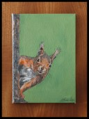 Red Squirrel - Acrylic on Canvas