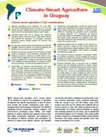 CSA_in_Uruguay.pdf_