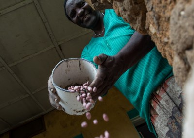 Breaking the bottlenecks to bean seed systems in Africa